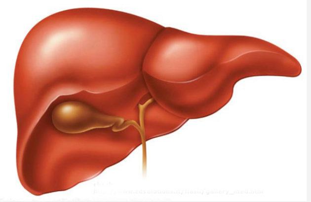 Заболевания печени и желчного пузыря