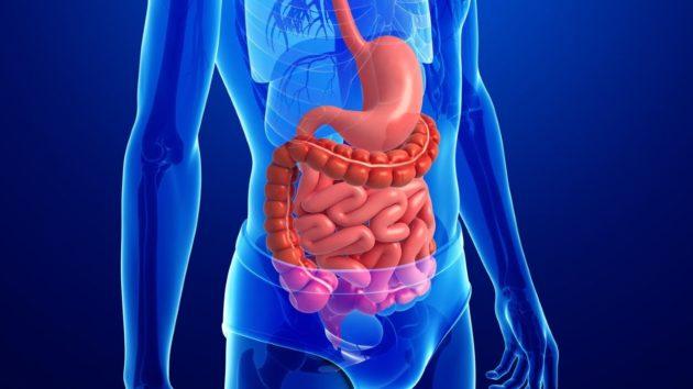 Система питания для похудения на 1 месяц без диет