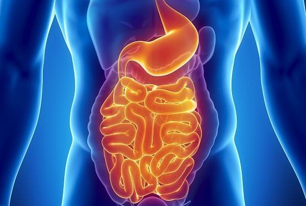 Кандидоз прямой кишки симптомы