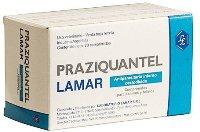 Празиквантел - препарат от описторхоза